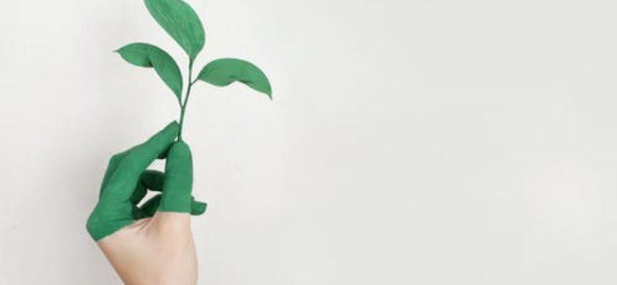 2 corsi GRATUITI ad Arezzo per disoccupati per Operatore addetto rifiuti & Esperto di ambiente e sistemi di gestione ambientale