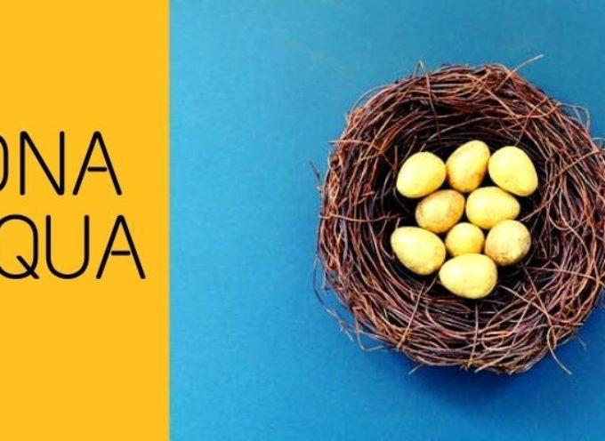 Buona Pasqua da Informagiovani Arezzo!
