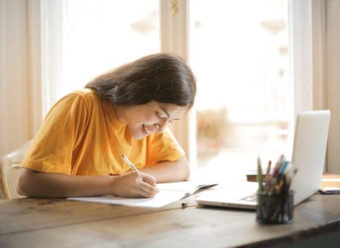 Il curriculum dello studente: consultazione e compilazione per studenti delle superiori