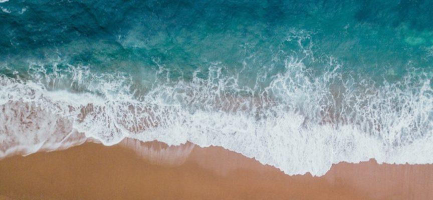 Giornata Mondiale degli Oceani: webinar a cura di ISPRA
