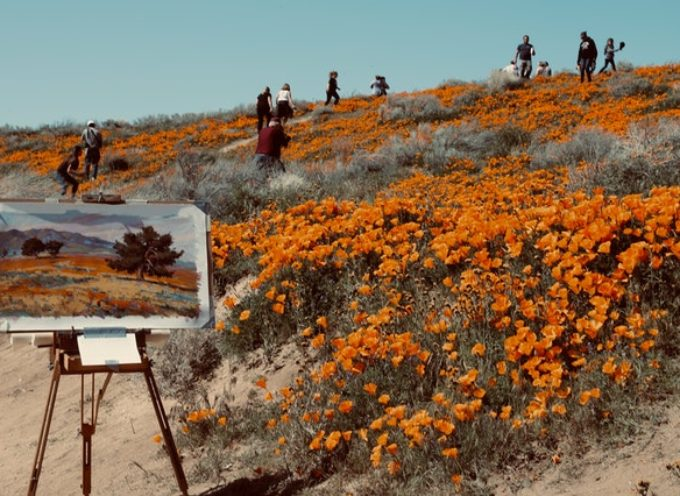 Be natural be wild – 3^a edizione del concorso di pittura naturalistica a cura di Fondazione CR Biella