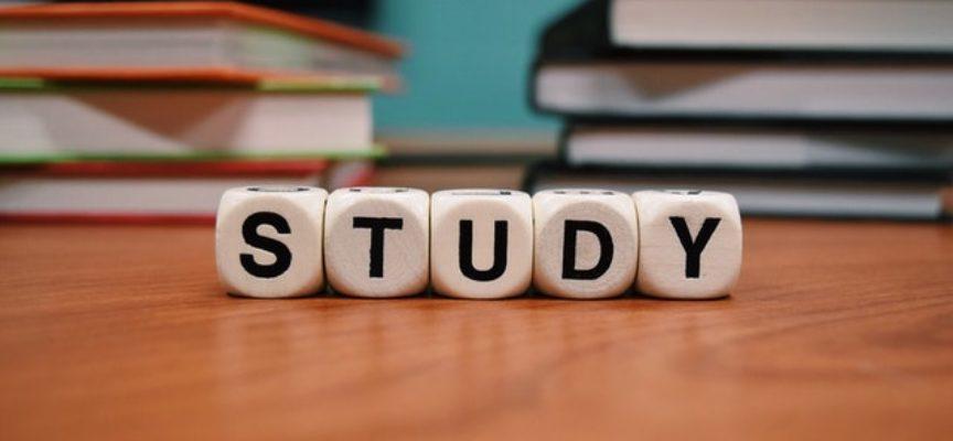 Bando Supermedia: 9800 borse di studio INPS per studenti delle scuole secondarie di primo e secondo grado